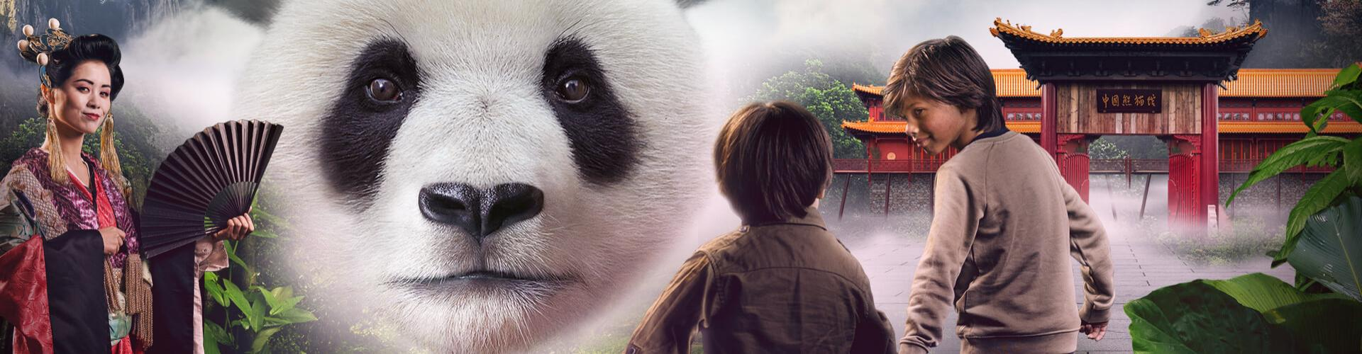 banner Unique in <br> the Netherlands <br> giant pandas